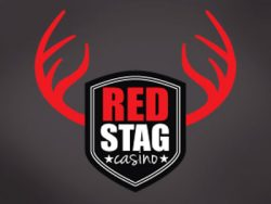 980% Match at a casino at Red Stag Casino